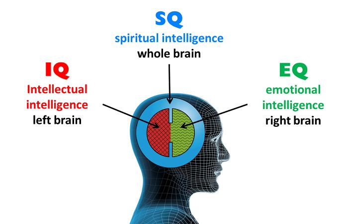 sự khác biệt giữa chỉ số IQ EQ và SQ
